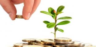 Почему личный доход врача–владельца клиники не растет?
